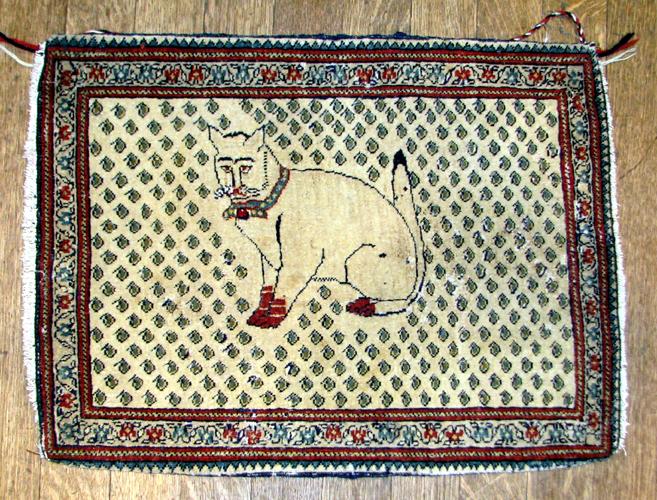 015 cat rug