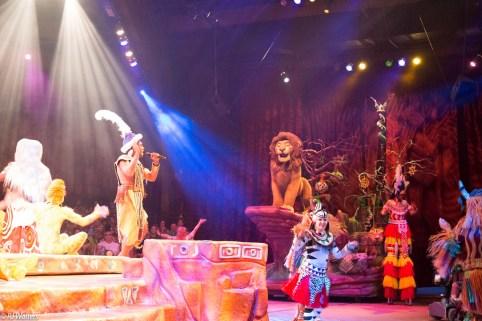 Lion King DW-5