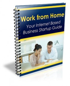 work from home bookcover