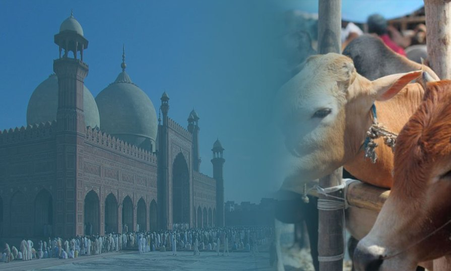 Difference Between Eid Ul Adha And Eid Ul Fitr Product Image