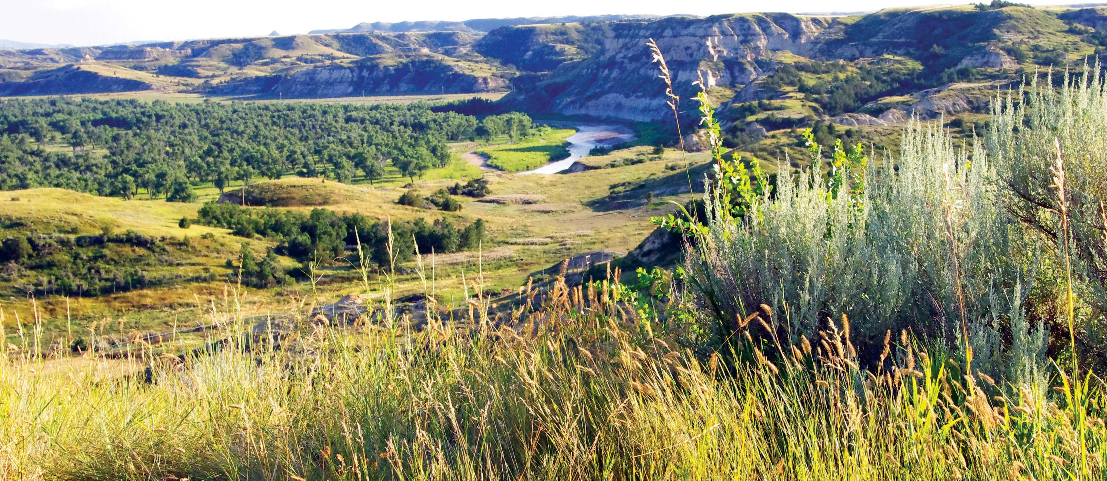 north dakota park