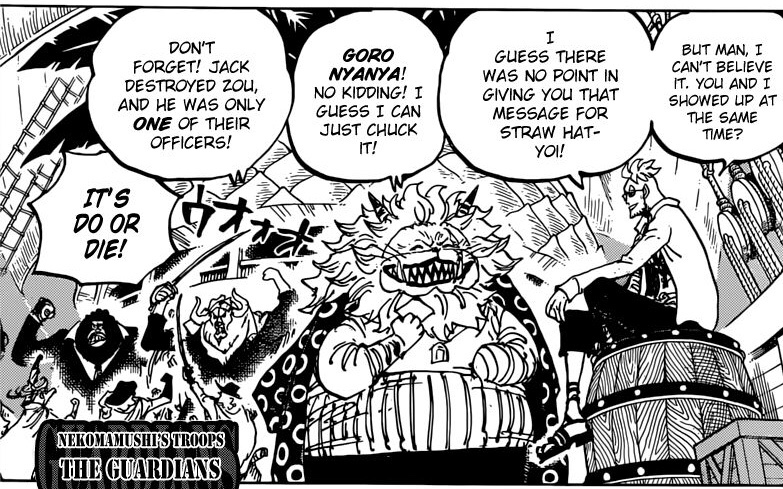 One Piece Chapter 982 Marco and Nekomamushi Prepare to Join the Fight