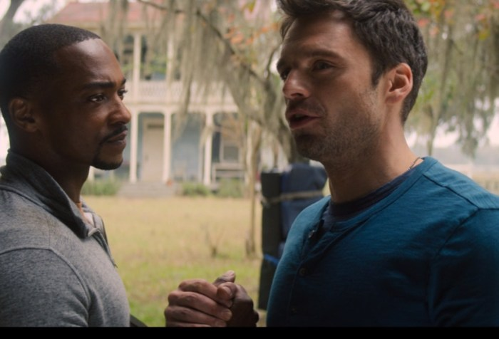 The Falcon and the Winter Soldier Episode 5-The Bromance is Back!