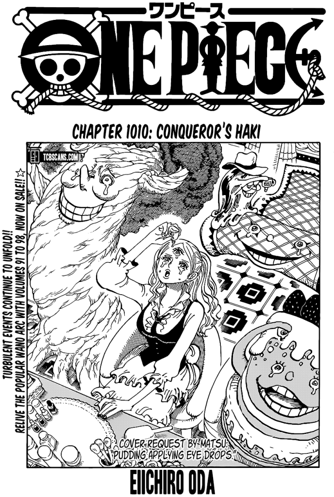 One Piece Chapter 1010 Cover Page