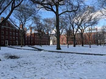 Harvard University Yard