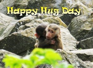 Hug Day Funny Pic Photo For Girls Wife