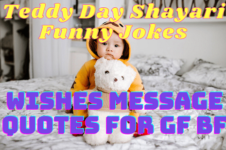 Teddy Day Shayari Funny Jokes Quotes Wishes Message
