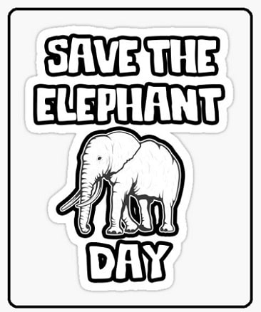 images Photo Pictures For Save The Elephant Day 2021