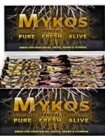 Xtreme Gardening Mykos Bar 100g