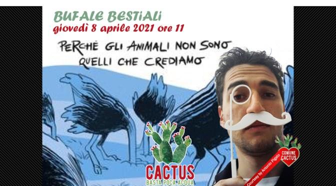 """Cactus. Basta poca acqua svela le verità nascoste dietro """"Bufale bestiali"""" insieme al biologo Graziano Ciocca, giovedì 8 aprile alle 11:00"""