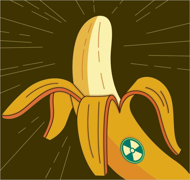 Bananas Are Radioactive Can They Get A Geiger Counter