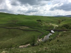 Smardale Ghyll and Smardale Bridge