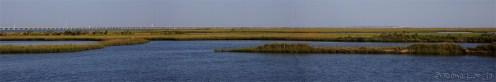 Pont de Grand Isle traversant les marais du golf du Mexique. Vue de l'île.