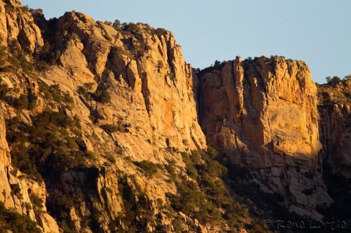 Catalina State Park
