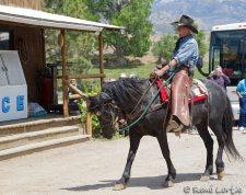 Le cowboy de chez Dirty Annie's