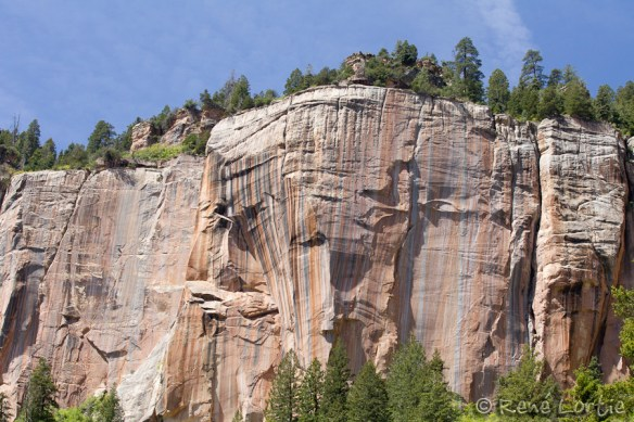 Formation rocheuse dans le sentier North Kaibab
