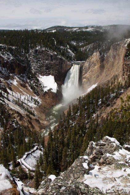 Lower Falls - Grand Canyon of Yellowstone