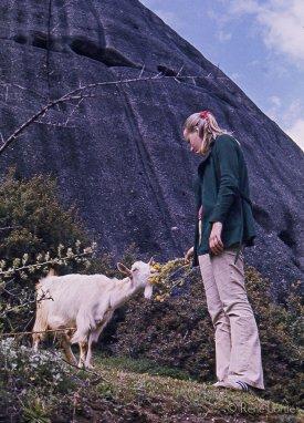 Claire et la chèvre