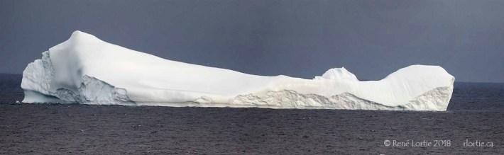 L'Iceberg de Bonavista