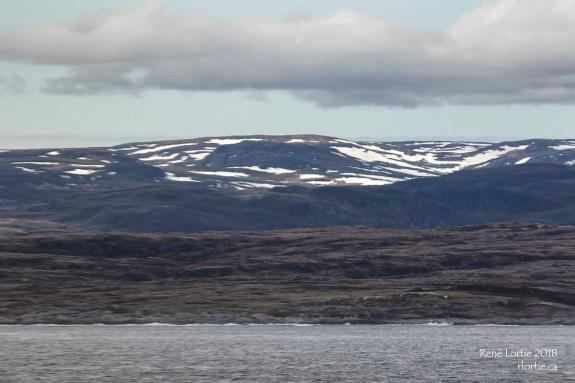 De la neige sur les montagnes pour marquer notre arrivée à Terre-Neuve...