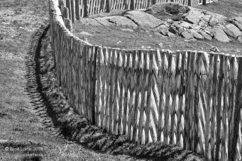 Clôture de Terre-Neuve. Elles sont toutes spéciales : quelques fois croisées, d'autres fois tressées, entrelacées, toujours belles à voir.