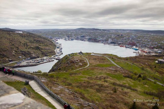 Le port de St-John's vu de Signal Hill