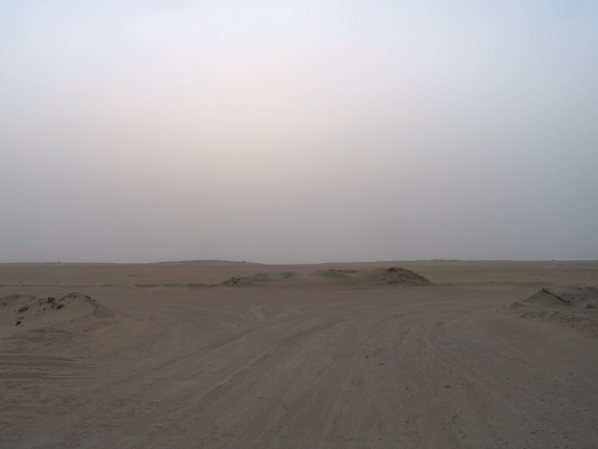 Kuwait Landscape1