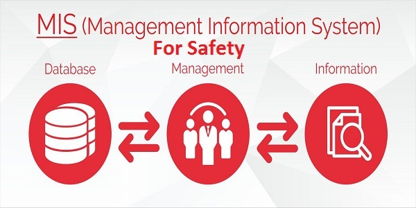 Management information system for safety
