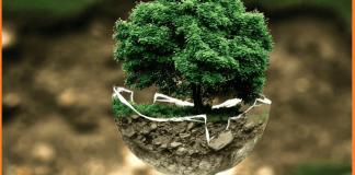 ENVIRONMENT MANAGEMENT PLAN FOR CONSTRUCTION