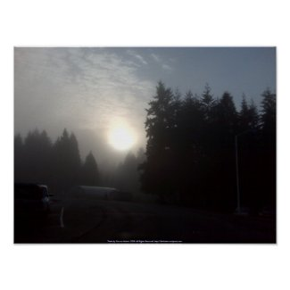 Misty Morning Sun #3