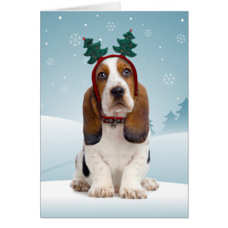 Funny Dog Christmas Cards Amp Invitations