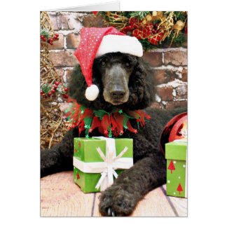 Poodle Gifts T Shirts Art Posters Amp Other Gift Ideas