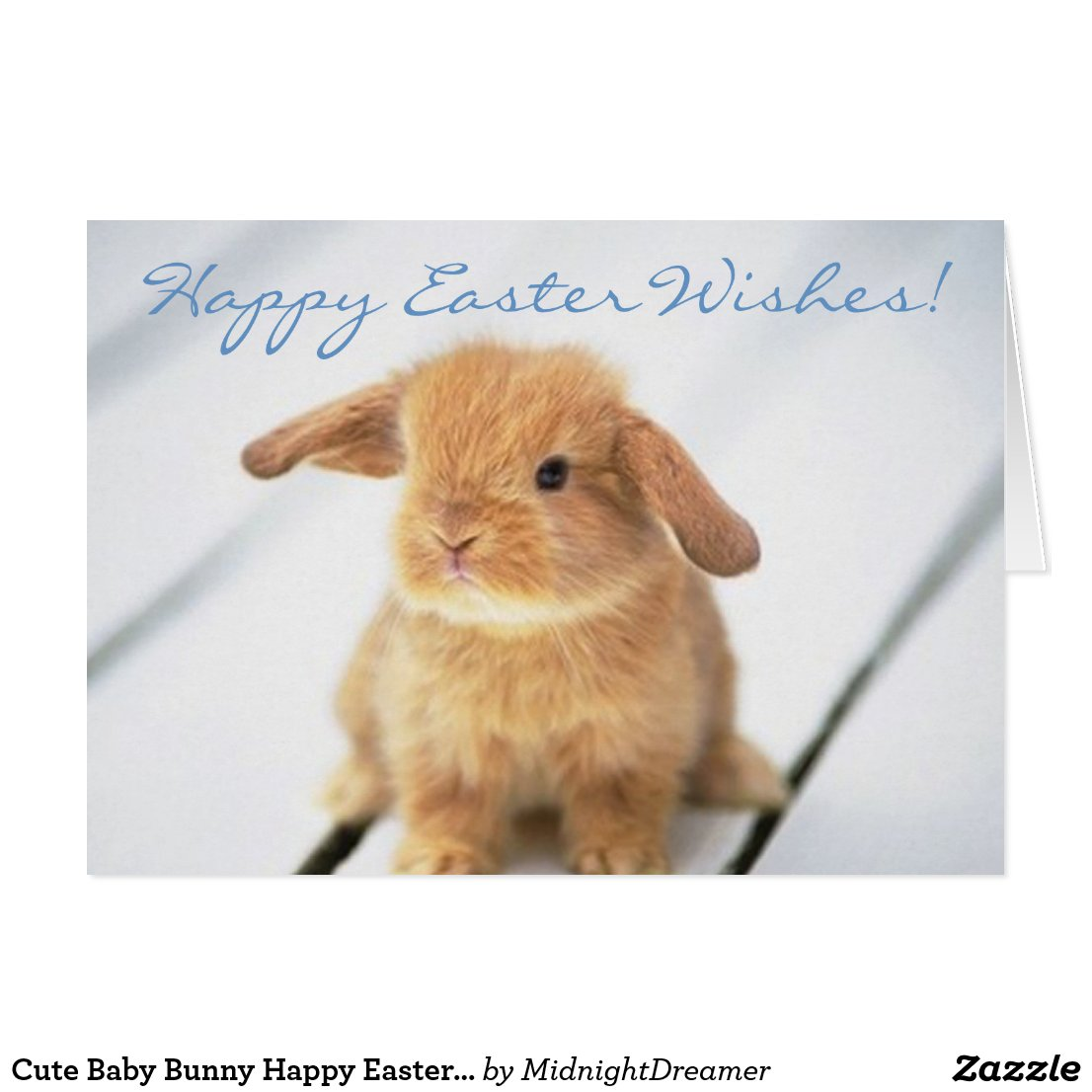 Cute Baby Bunny Happy Easter Card