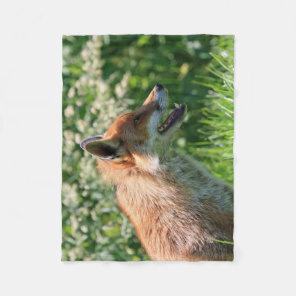 fox blanket, foxy throw, fox cub throw blanket