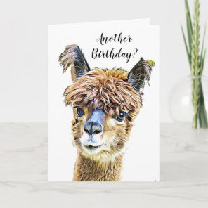 Funny Alpaca Llama Humour Birthday Card