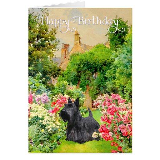 Scottish Terrier Birthday Card Zazzle