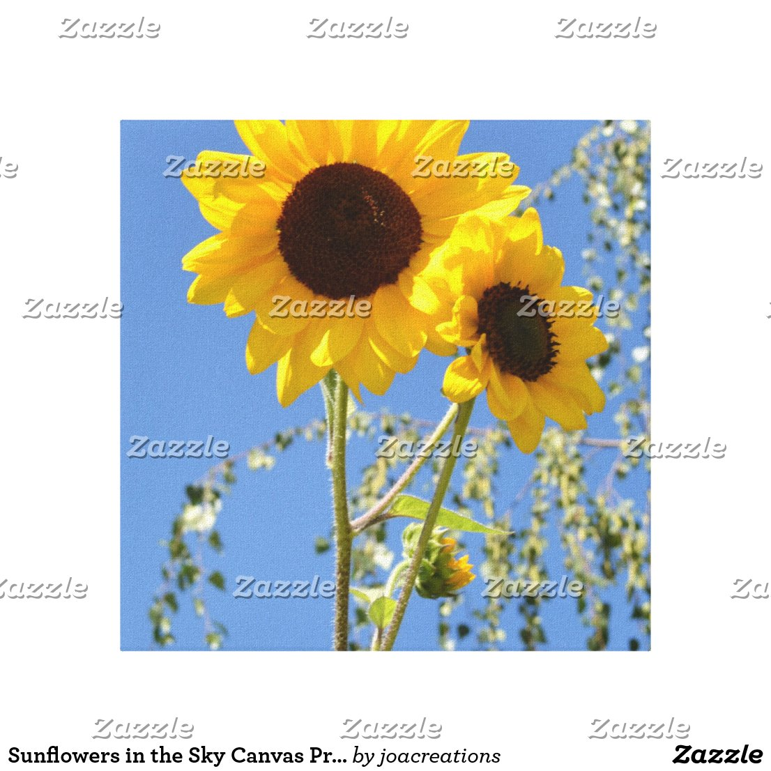 Sunflowers in the Sky Canvas Print