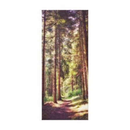 Woods in Cevennes Canvas Print