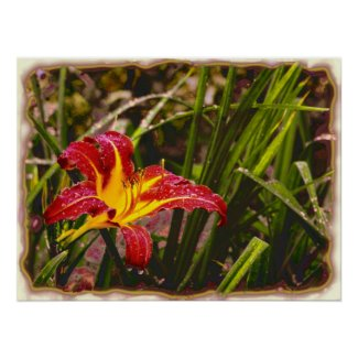 Yesterday Lily After The Rain print