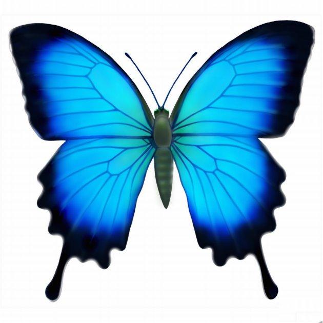Papilio Ulysses Butterfly Ornament Photo Sculpture Decoration Au