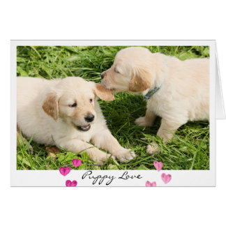 Happy Golden Puppy Greeting Cards Au