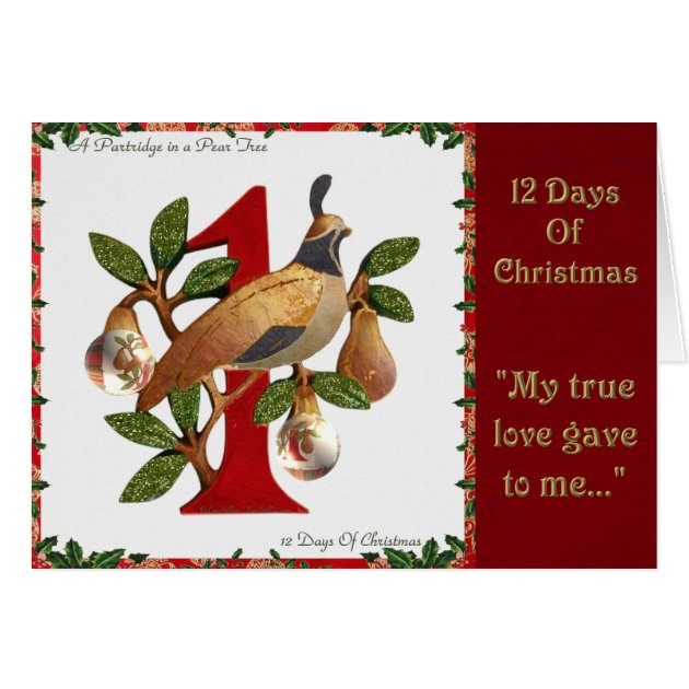 12 Days Of Christmas Partridge In A Pear Tree Card