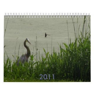 2011 waterfowl calendar calendar