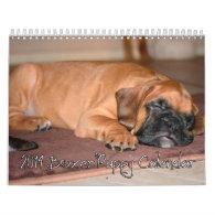2014 Boxer Puppy Calendar