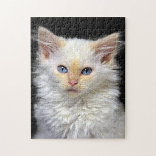 A Cream Siamese Kitten With Red Points Jigsaw Puzzles