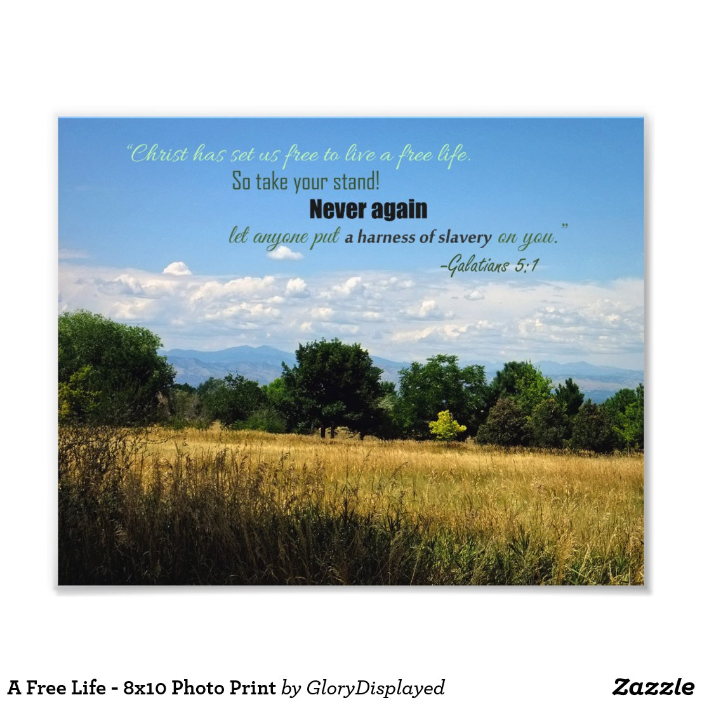 A Free Life - 8x10 Photo Print