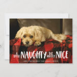 A Little Naughty | Photo Holiday Card