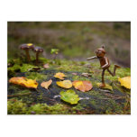 Acorn elf jumping on leafs postcard