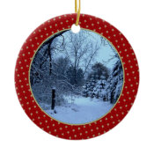 Add Your Picture Ornament ornament