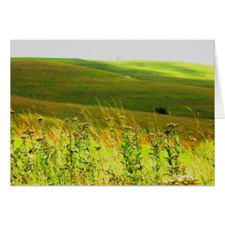 Amazing Flint Hills Card